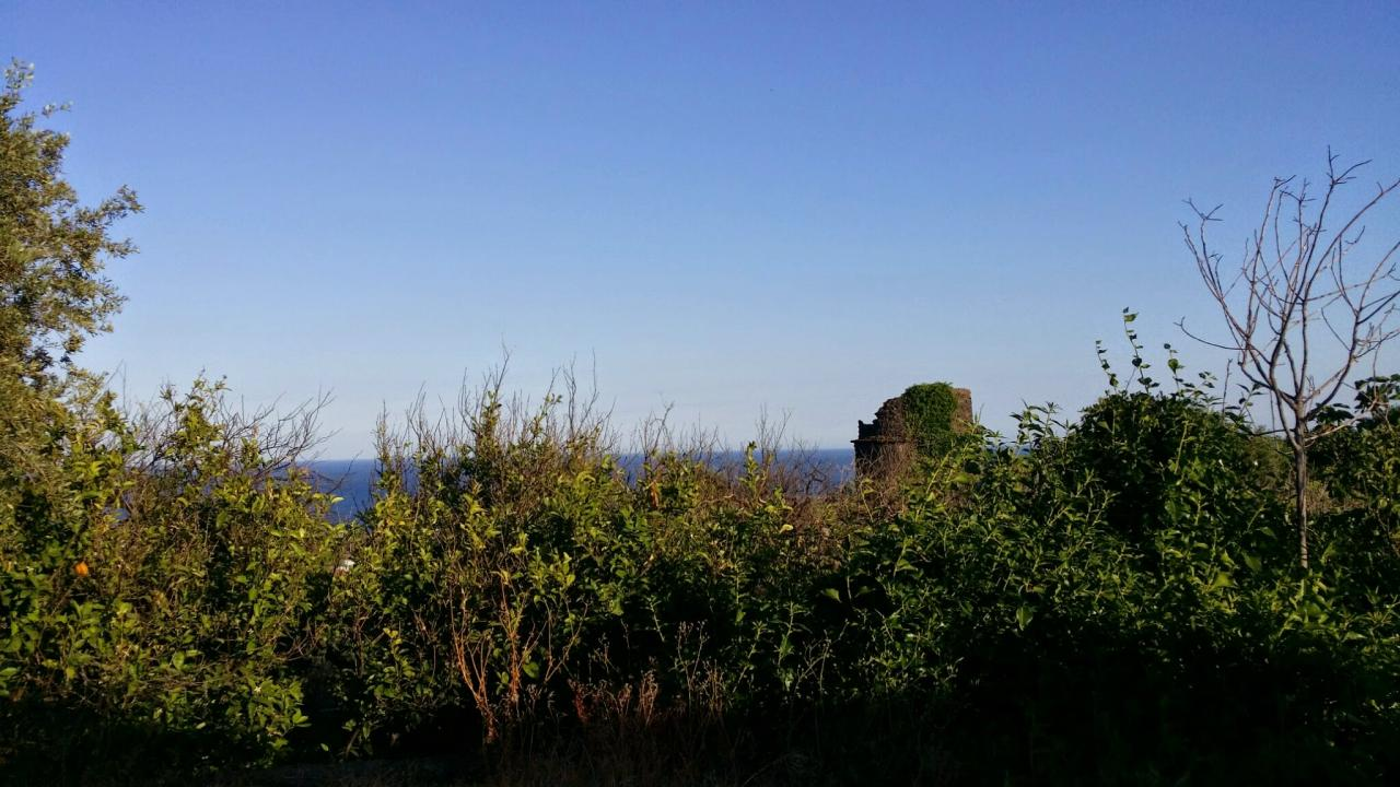 Terreno Agricolo in vendita a Aci Castello, 9999 locali, zona Località: AciCastello, prezzo € 79.000 | Cambio Casa.it