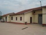 Magazzino in affitto - 250 mq