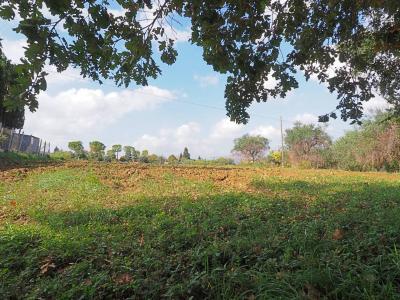 Terreno edificabile in Vendita a Corridonia