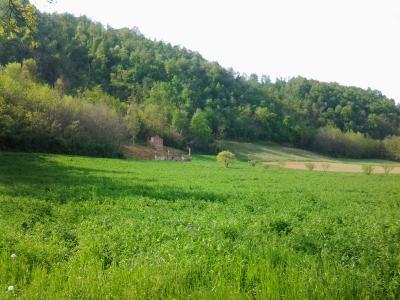 Rustico in Vendita a Lugagnano Val d'Arda