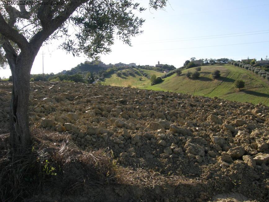 Terreno agricolo in vendita a Stella Di Monsampolo, Monsampolo Del Tronto (AP)