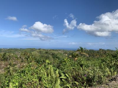 Land for Sale to Las Terrenas
