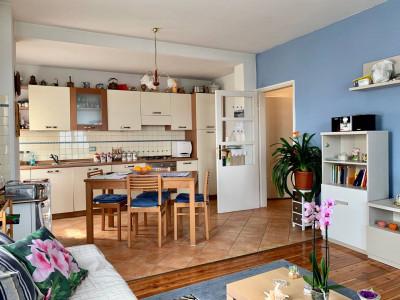 Appartamento in Affitto a Sospirolo