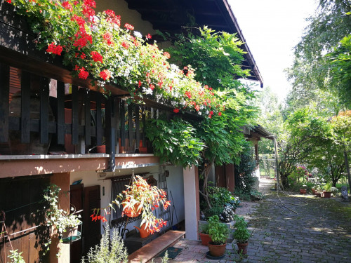 Casa singola in Vendita a San Gregorio nelle Alpi