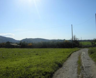 Terreno Agricolo in Vendita a Bellizzi