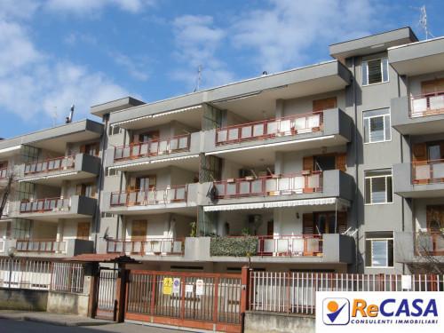Appartamento in Affitto a Bellizzi