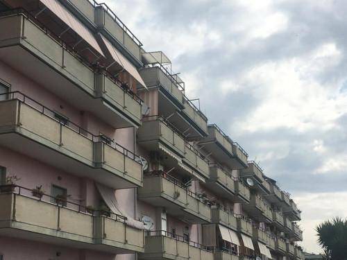 Appartamento in Affitto a Montecorvino Pugliano