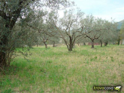 Terreno Agricolo in Vendita a San Benedetto del Tronto
