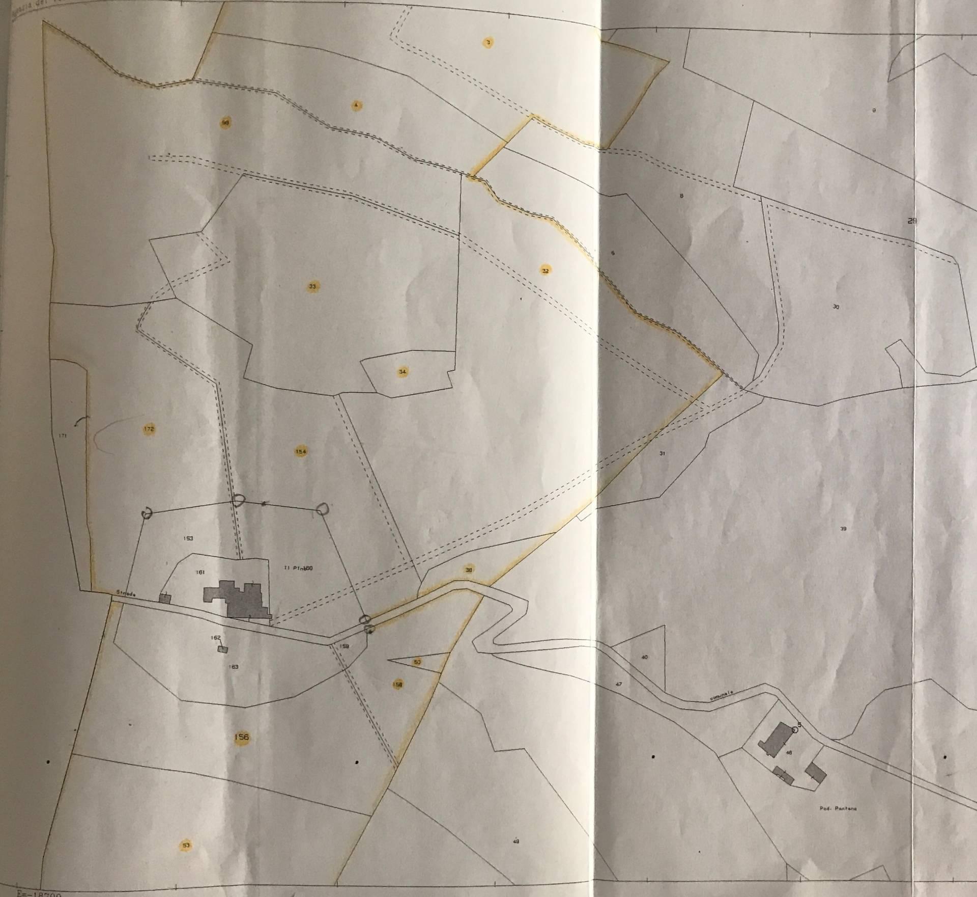 Terreno Agricolo in Vendita a Montespertoli