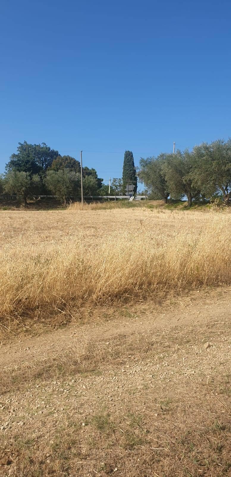 Terreno Agricolo in vendita a Mosciano Sant'Angelo, 9999 locali, prezzo € 40.000 | CambioCasa.it