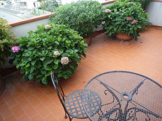 Attico / Mansarda in vendita a Pisa, 5 locali, zona Zona: Cisanello, prezzo € 285.000 | Cambio Casa.it