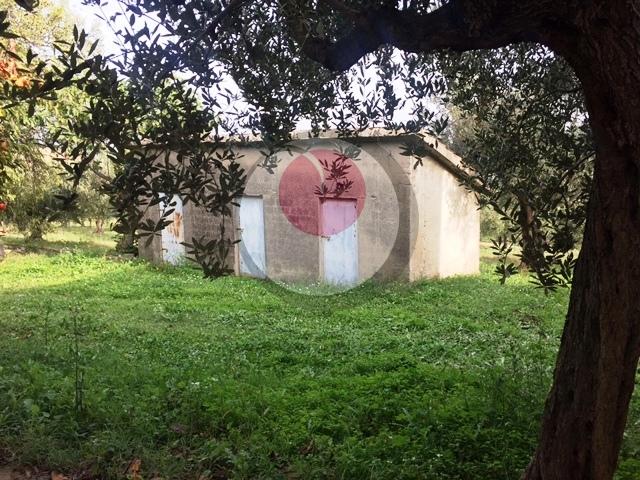 Soluzione Indipendente in vendita a Lanciano, 6 locali, prezzo € 80.000 | Cambio Casa.it
