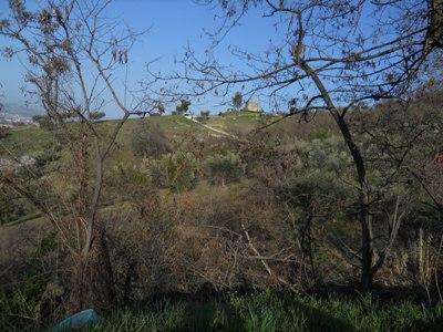 Terreno Agricolo in vendita a Controguerra, 9999 locali, prezzo € 110.000 | CambioCasa.it