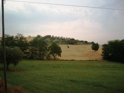 Terreno Edificabile Residenziale in vendita a Controguerra, 9999 locali, prezzo € 250.000 | CambioCasa.it
