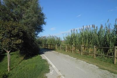 Bilocale Alba Adriatica Via Baracca 2
