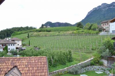 Wohnung - Attikawohnung kaufen in Appiano sulla strada del vino - Eppan an der Weinstrasse