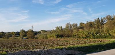 Agricultural Land for Sale to Monte San Giusto