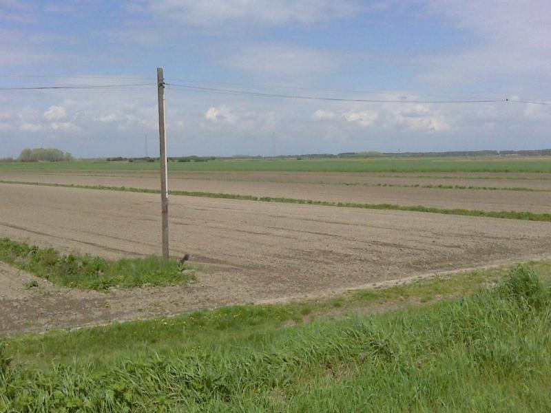 Terreno Agricolo in vendita a Terzo d'Aquileia, 9999 locali, prezzo € 1.040.000 | CambioCasa.it