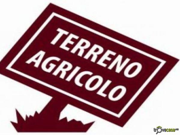 Terreno Agricolo in vendita a Villorba, 9999 locali, zona Zona: Lancenigo, prezzo € 50.000 | CambioCasa.it