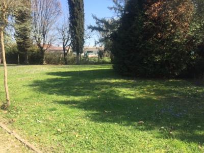 Ville bifamiliari e a schiera in Vendita a Treviso