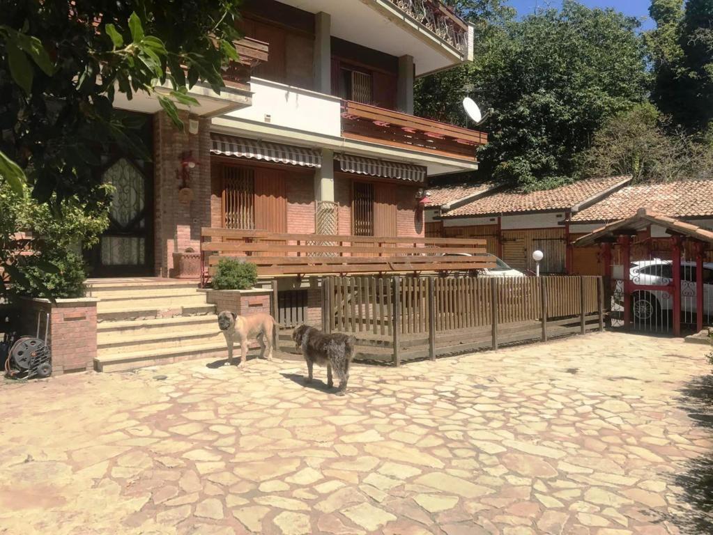 Appartamento in vendita VIA TORONE Avellino
