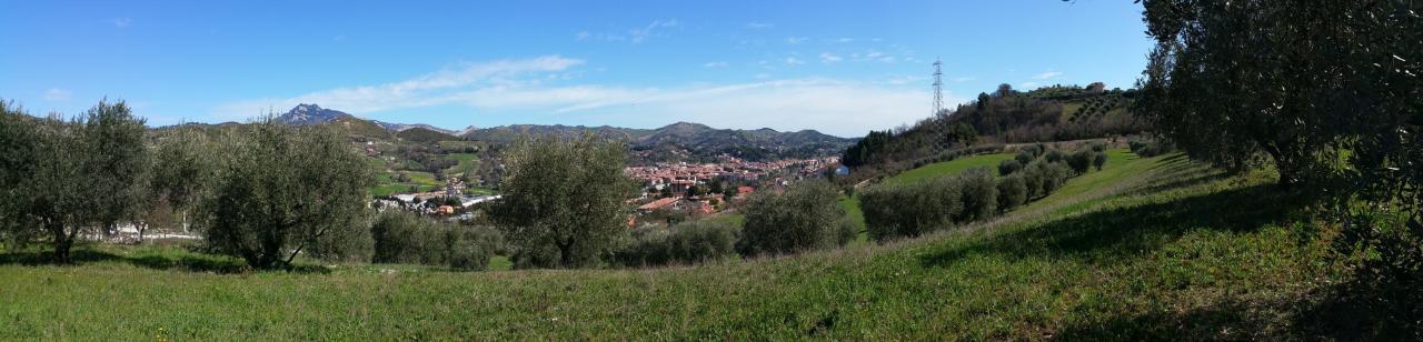 terreno ascoli piceno vendita  porta romana  simone geom. galiè