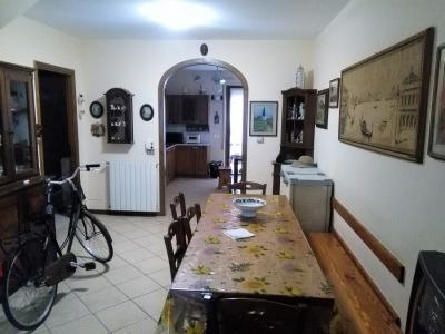 Viareggina in Vendita a Viareggio