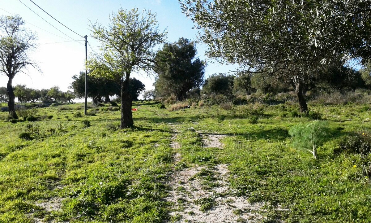 Terreno Edificabile Residenziale in vendita a Scicli, 9999 locali, zona Zona: Scicli, Trattative riservate | Cambio Casa.it