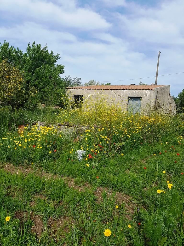 Rustico / Casale in vendita a Scicli, 2 locali, zona Zona: Scicli, Trattative riservate | Cambio Casa.it