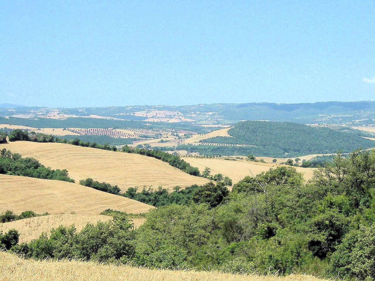 Terreno Agricolo in vendita a Manciano, 9999 locali, zona Località: PoderidiMontemerano, Trattative riservate   CambioCasa.it