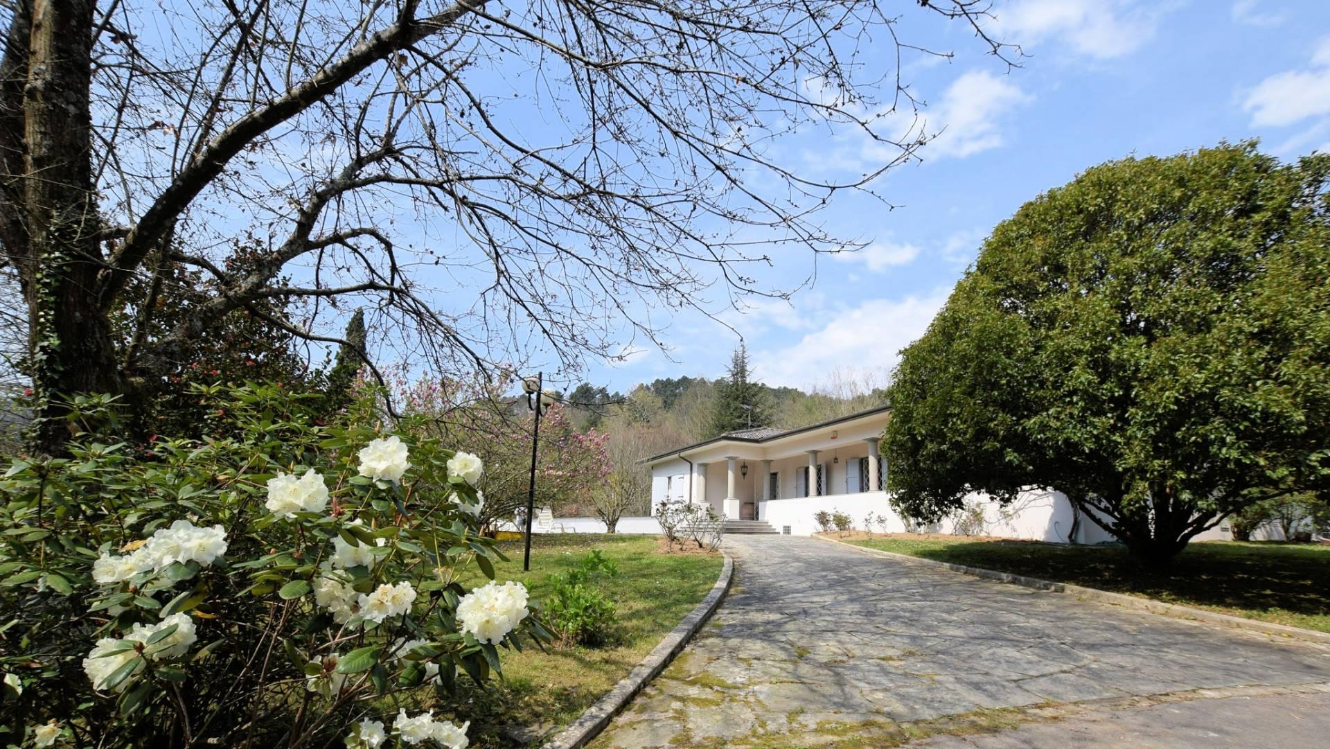 Foto - Villa In Vendita Camaiore (lu)