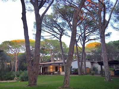 Villa singola a Castiglione della Pescaia (1/5)