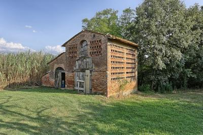 Azienda agricola a Montaione (2/5)