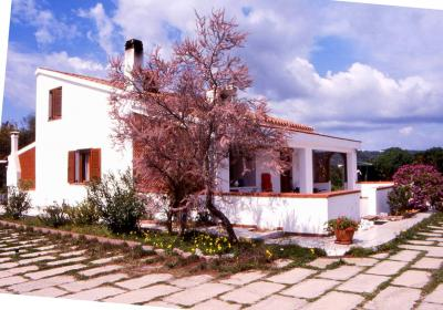 Villa in Vendita a Carloforte