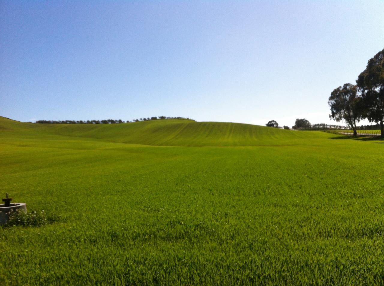 Terreno edificabile in VENDITA a Spezzano Piccolo