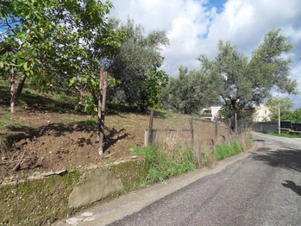 Terreno edificabile in VENDITA a Mendicino