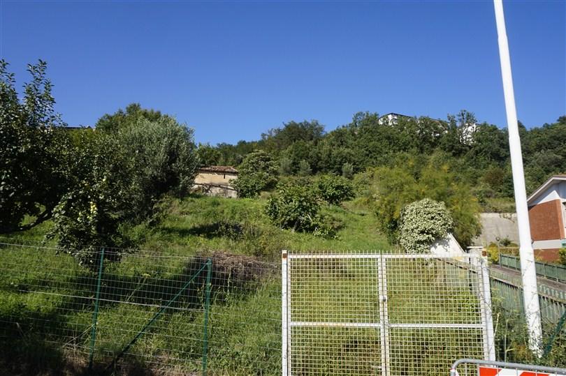 Terreno Misto Edificabile-Agricolo in VENDITA a Spezzano Piccolo