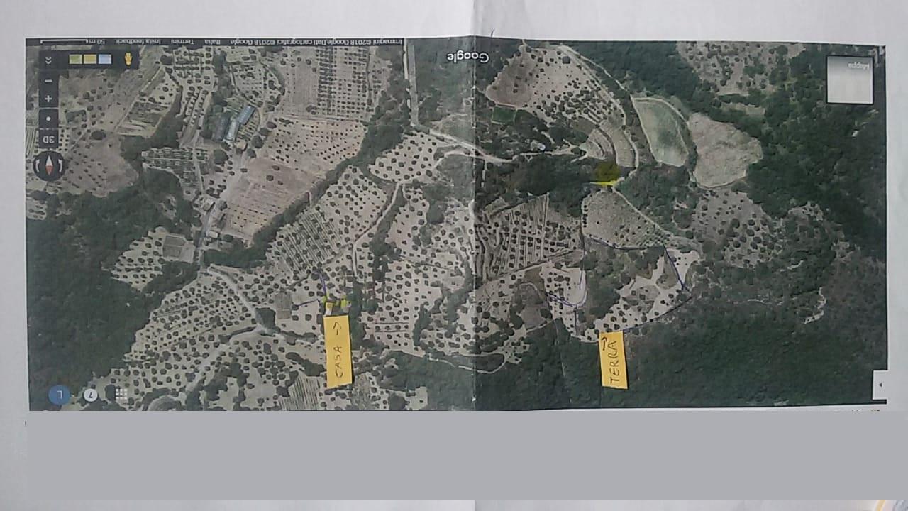 Terreno Agricolo in vendita a Lappano, 9999 locali, prezzo € 48.000 | CambioCasa.it