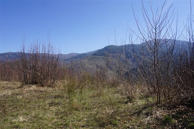Terreno edificabile in VENDITA a Spezzano della Sila