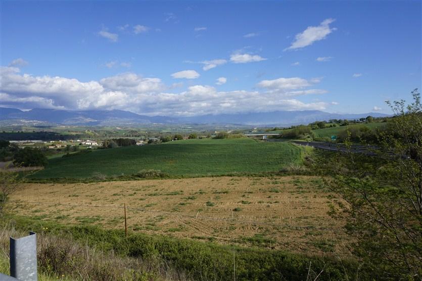 Terreno Agricolo in VENDITA a Tarsia