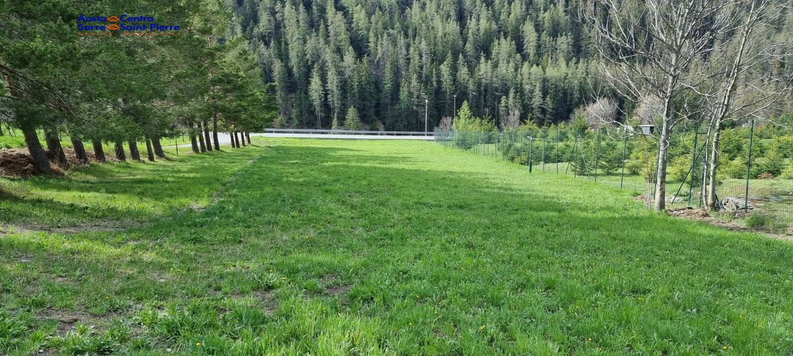 Terreno Agricolo in vendita a Saint-Oyen, 9999 locali, prezzo € 40.000   PortaleAgenzieImmobiliari.it