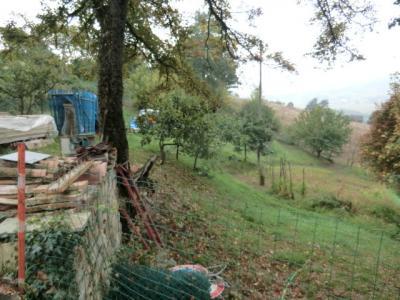 Terreno edificabile in Vendita a Serramazzoni